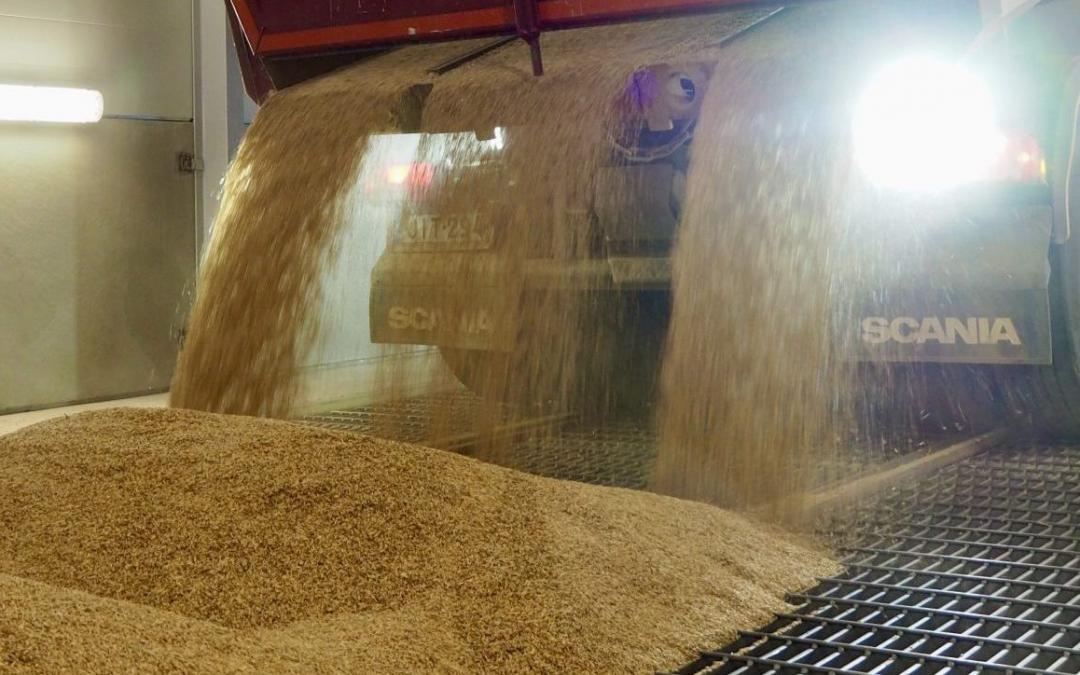 A new grain unloading station will strengthen Rauma's grain traffic